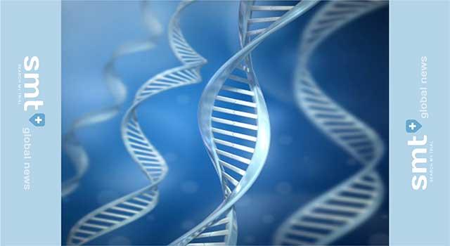 遺伝子多型で2型糖尿病罹患の予測能が向上